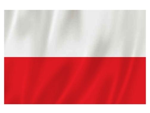 """Flaga Polski w """"Żabkach"""""""