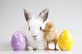 Wielkanocne zwierzęta